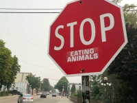 Stop Eating Animals, Neslon BC