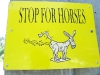Stop for Horse Farts on Vickers Ranch Rides