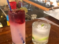 Skagway Distillery Rosehip Collins and Spruce Tip Gin and Tonic