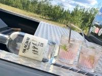 Skagway Distillery Alaska Angostora Gin and Tonics