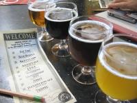 New Belgium Brewery Beer Tasting