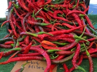 Borrego Springs CA Farmes Market Fresh Red Chile