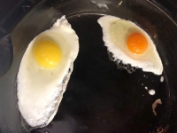 Comparing Eggs: Happy Chicken - Sad Chicken