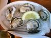 Fresh Humboldt Bay Kumumoto Oysters