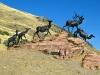 Jackson Wyoming National Museum of Wildlife Art