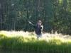Fly Fishing at Vickers Lake