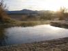 Wild Tub Hot Spring Tecopah, CA