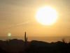 Quartzsite Arizona Sunrise Cactus