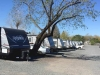 FEMA trailers at Santa Rosa Fairgrounds
