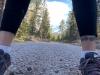 Running near Mount Shasta, California