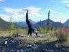 Northern Rocky Mountain Yoga Pose, Petersen Creek BC