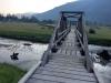 Estuary Boardwalk, Stewart British Columbia
