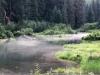 Fish Creek Bear Observation Deck, Hyder Alaska