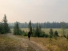 Prince George Cranbrook Greenway Running Trail