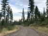 Old Hot Springs Road, Hot Springs, Montana
