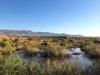 Niland California Hot Springs near FOY