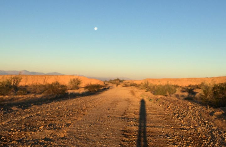 morning desert run