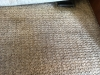 Clean RV carpets