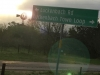 Luckenbach Texas Morning Windmill