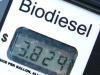 Arizona Biodiesel Pump Price