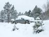 Colorado Snowbird RVers come home too early!