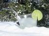 Rocky Mountain Colorado Snowbirds