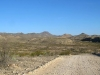 Black Gap Wildlife Management Area Big Bend Texas