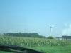 Ohio corn field