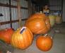 Spartansburg PA County Fair