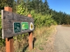 Olympic Discovery Trail Running Path
