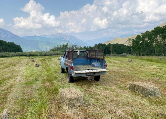 Vickers Ranch Hay