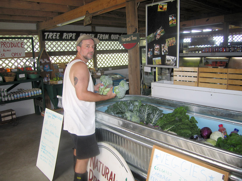 Restocking organic produce at the White Rabbit Acres farm store