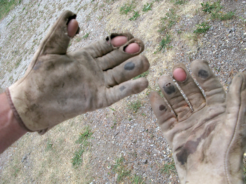Work gloves destroyed in weeks by workamping at ranch