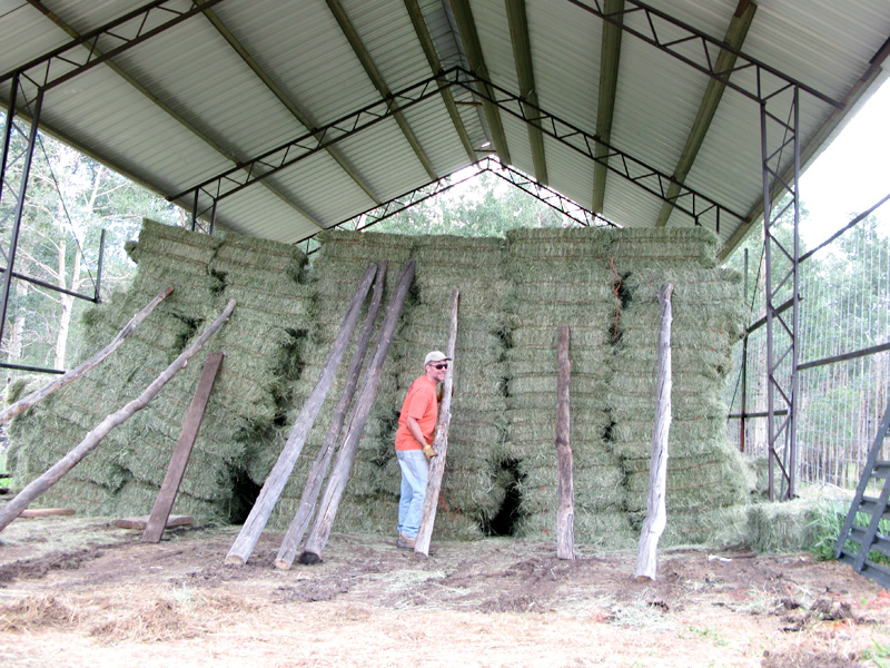 Jim stacks hay bales in the vickers hay Barn