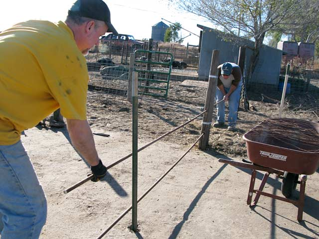 Workamping at Diggin Dust Heritage Hog Farm Cope CO