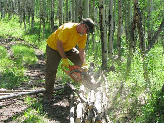 Cutting Firewood at Vickers Ranch Workamping Job