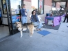 Soliciting donations for Safe Harbor at pet adoption day