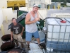 Collecting grease for biodiesel production