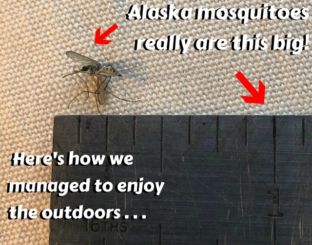 Must Have Alaska Rving Gear Deet Free Mosquito Protection