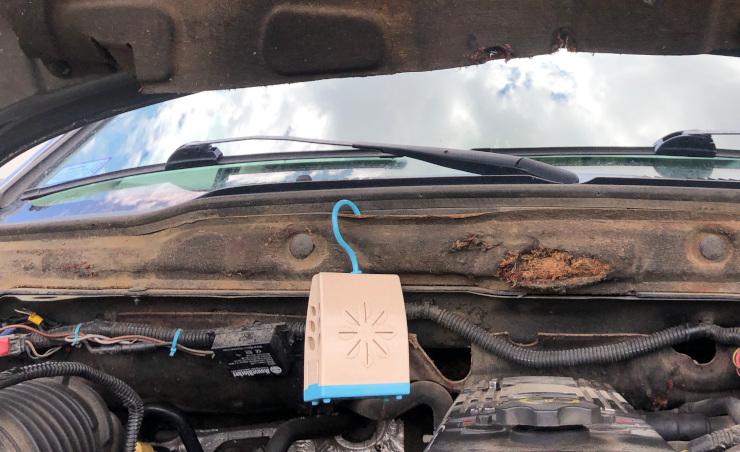 Dodge engine pest prevention