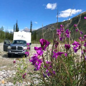 Free-Boondocking-along-Petersen-Creek-in-BC-Canada