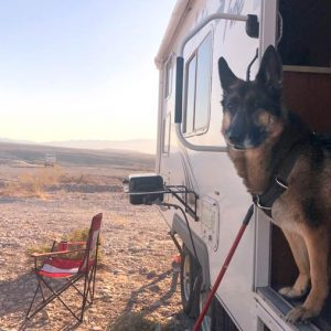Wyatt-Standing-Guard-Lake-Mead-Free-Boondocking